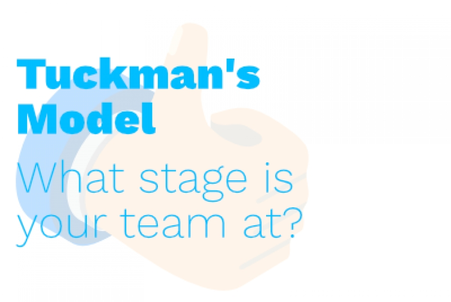 What Stage is Your Team At?